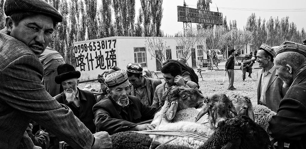 Animal Bazaar - Kashgar, China