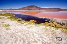 3. Laguna Colorada, Bolivia