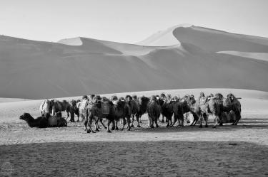 Singing Sand Dunes, Dunhuang, China (2014)