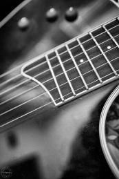 Macro Guitar I