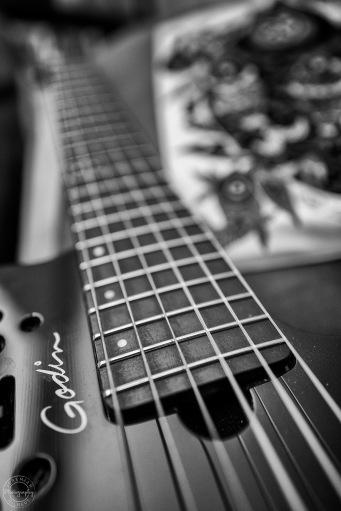 Macro Guitar III