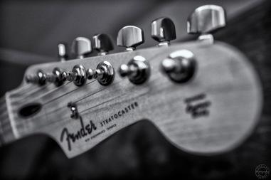Macro Guitar IV