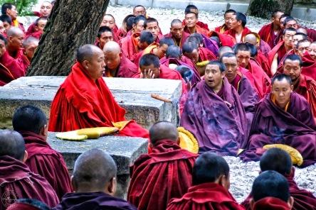 Sera Monastery, Tibet (2006)